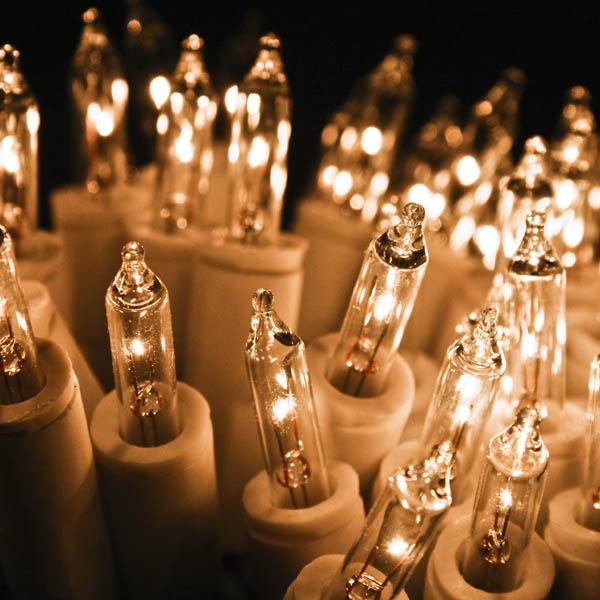 100 Clear Fairy Lights Indoor